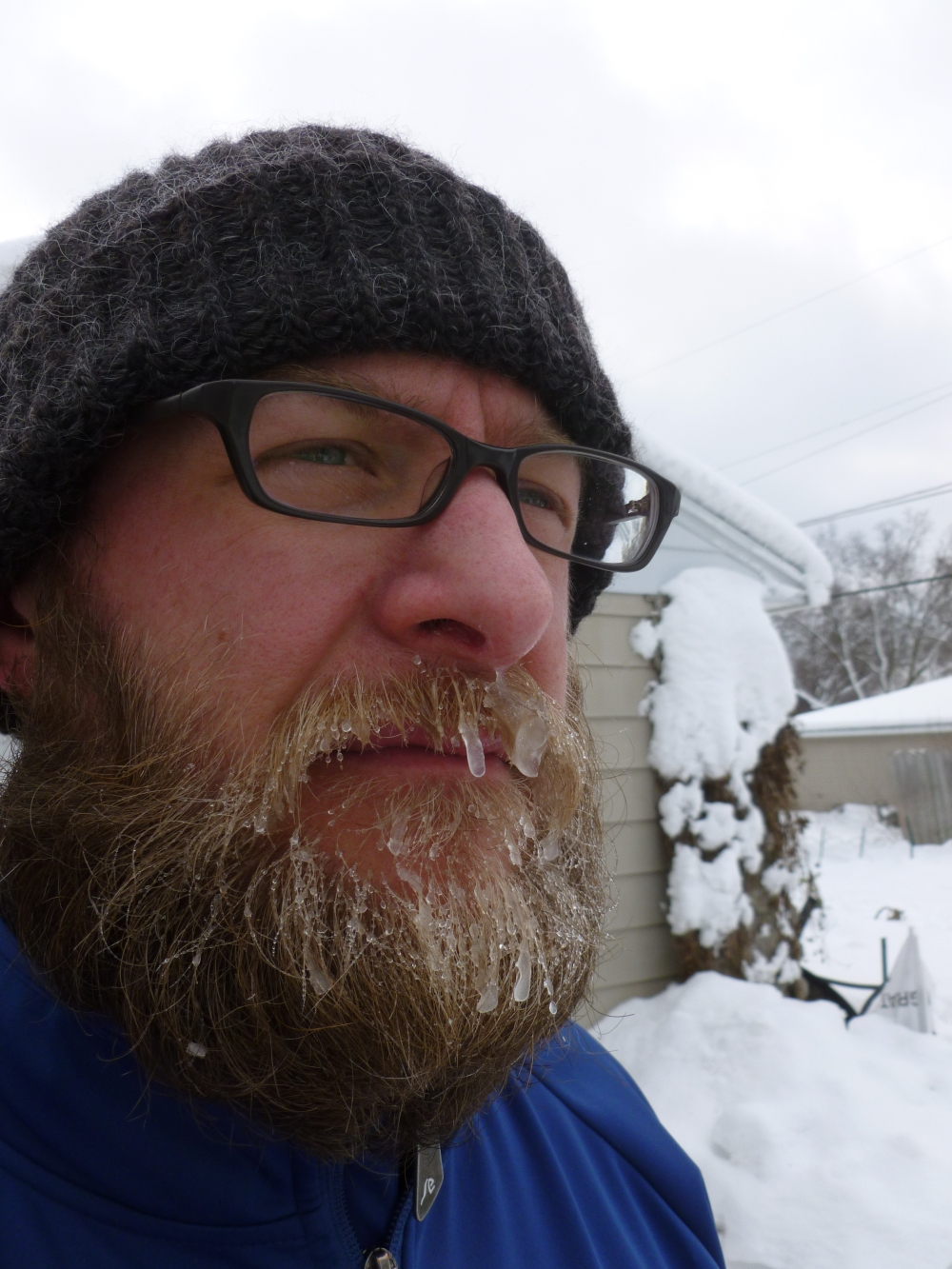 Icier beard