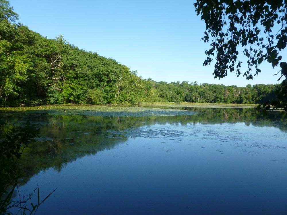 Lake at HCSP