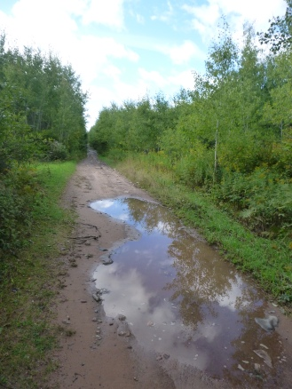 The state of the ATV trails.