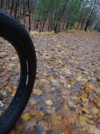Wet leaves and fat tires.