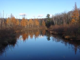 Woods, water, sky.