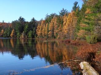 Hawk Lake.