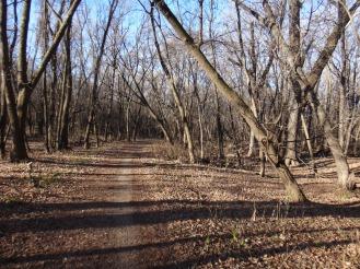 Bottomland trails.